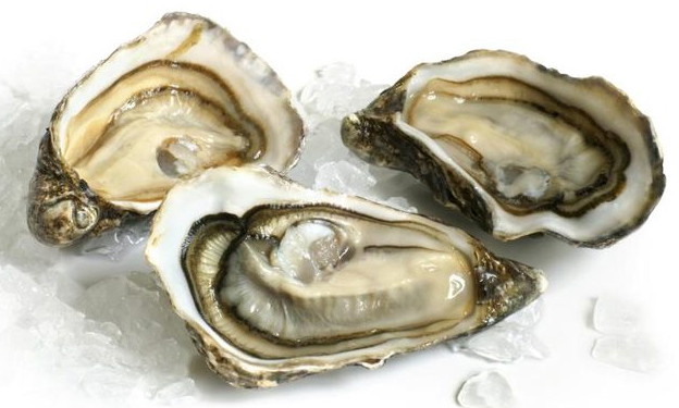 20151001182928-oyster